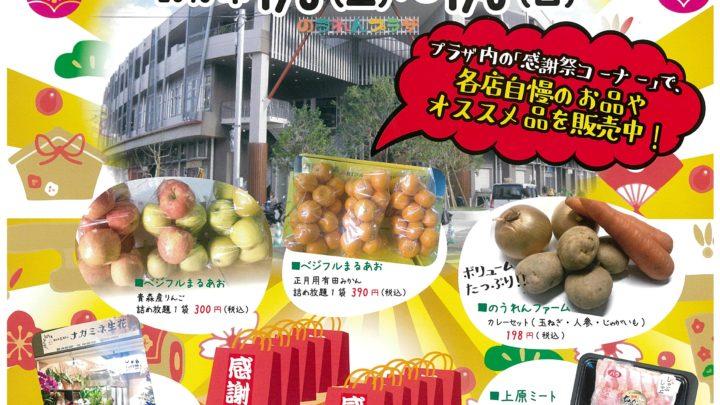 『のうれんプラザ新春感謝祭』のお知らせ。